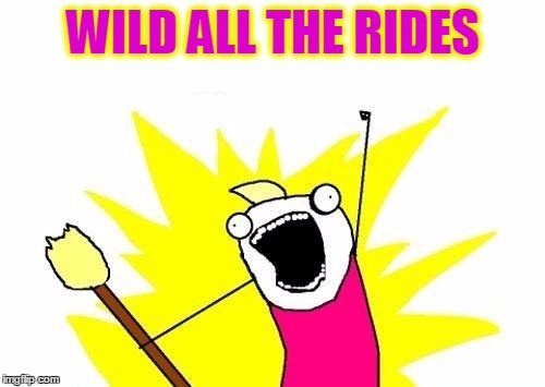 X All The Y Meme | WILD ALL THE RIDES | image tagged in memes,x all the y | made w/ Imgflip meme maker