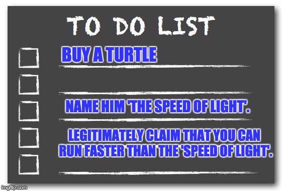 To do list | BUY A TURTLE NAME HIM 'THE SPEED OF LIGHT'. LEGITIMATELY CLAIM THAT YOU CAN RUN FASTER THAN THE 'SPEED OF LIGHT'. | image tagged in to do list | made w/ Imgflip meme maker