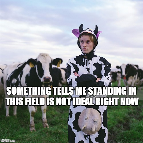 SOMETHING TELLS ME STANDING IN THIS FIELD IS NOT IDEAL RIGHT NOW | made w/ Imgflip meme maker