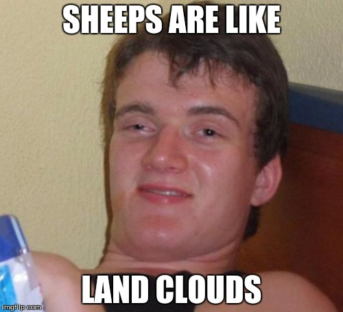 10 Guy Meme | SHEEPS ARE LIKE LAND CLOUDS | image tagged in memes,10 guy | made w/ Imgflip meme maker
