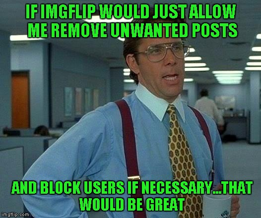 That Would Be Great Meme | IF IMGFLIP WOULD JUST ALLOW ME REMOVE UNWANTED POSTS AND BLOCK USERS IF NECESSARY...THAT WOULD BE GREAT | image tagged in memes,that would be great | made w/ Imgflip meme maker