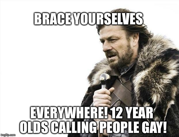 Brace Yourselves X is Coming | BRACE YOURSELVES EVERYWHERE! 12 YEAR OLDS CALLING PEOPLE GAY! | image tagged in memes,brace yourselves x is coming | made w/ Imgflip meme maker