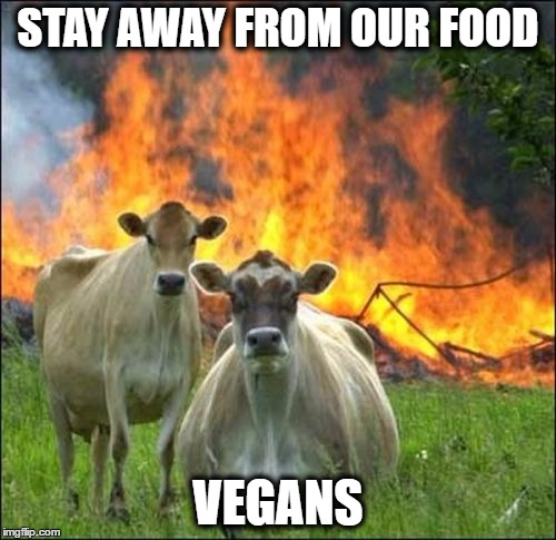 Evil Cows Meme | STAY AWAY FROM OUR FOOD VEGANS | image tagged in memes,evil cows | made w/ Imgflip meme maker