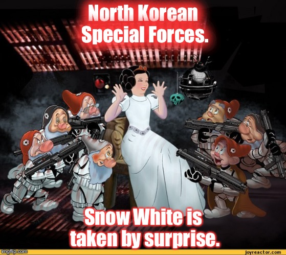 North Korean Special Forces. Snow White is taken by surprise. | image tagged in north korea special forces | made w/ Imgflip meme maker
