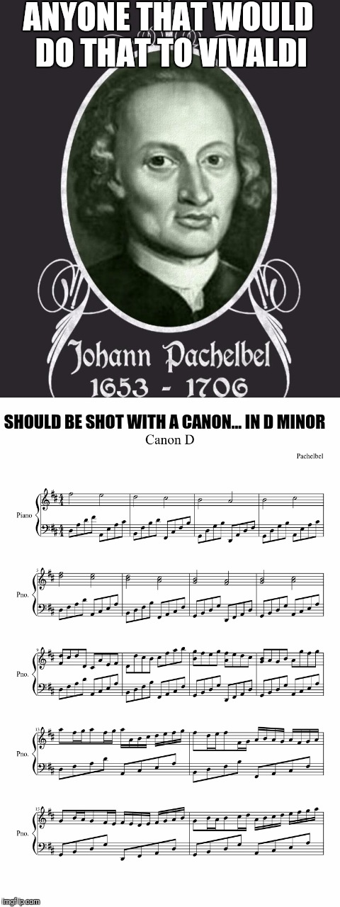 ANYONE THAT WOULD DO THAT TO VIVALDI SHOULD BE SHOT WITH A CANON... IN D MINOR | made w/ Imgflip meme maker