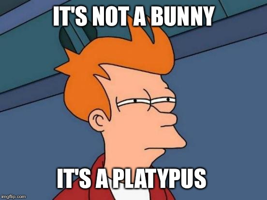 Futurama Fry Meme | IT'S NOT A BUNNY IT'S A PLATYPUS | image tagged in memes,futurama fry | made w/ Imgflip meme maker