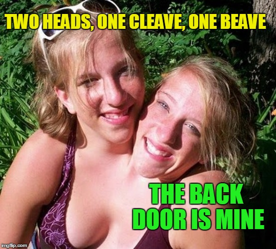 Can I have a little privacy? | TWO HEADS, ONE CLEAVE, ONE BEAVE THE BACK DOOR IS MINE | image tagged in cleavage week | made w/ Imgflip meme maker