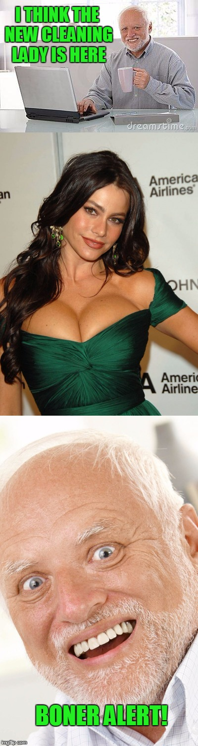 Cleavage week: Hide the boner Harold. | I THINK THE NEW CLEANING LADY IS HERE BONER ALERT! | image tagged in cleavage week | made w/ Imgflip meme maker