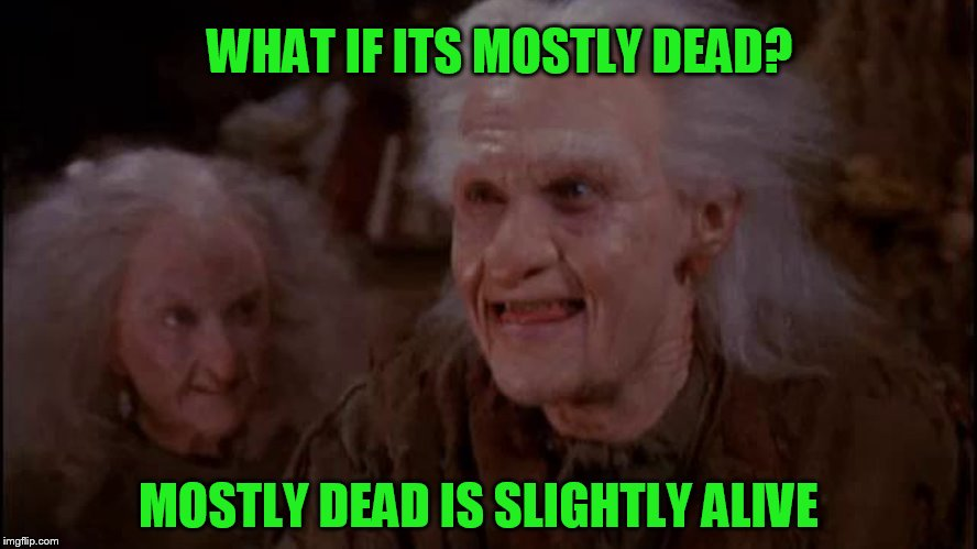 MOSTLY DEAD IS SLIGHTLY ALIVE WHAT IF ITS MOSTLY DEAD? | made w/ Imgflip meme maker
