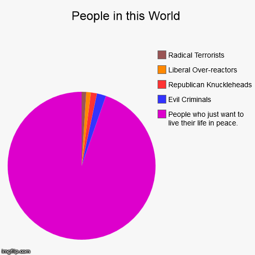 Is this your take? | People in this World | People who just want to live their life in peace., Evil Criminals, Republican Knuckleheads, Liberal Over-reactors, Ra | image tagged in funny,pie charts,people,the world | made w/ Imgflip pie chart maker