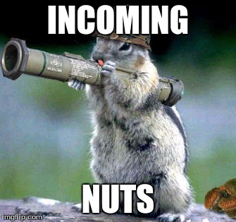 Bazooka Squirrel Meme | INCOMING NUTS | image tagged in memes,bazooka squirrel | made w/ Imgflip meme maker