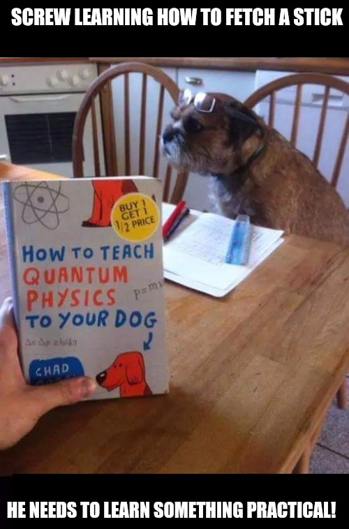 If he's going to work for incompetent bosses, it's going to be at University, not in a factory | SCREW LEARNING HOW TO FETCH A STICK HE NEEDS TO LEARN SOMETHING PRACTICAL! | image tagged in dog training,careers,quantum physics | made w/ Imgflip meme maker