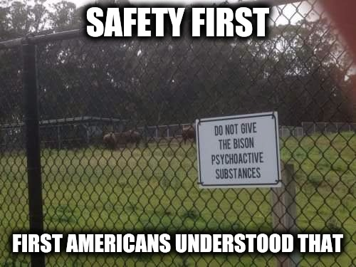 They were also the first to learn not to whiz on an electric fence | SAFETY FIRST FIRST AMERICANS UNDERSTOOD THAT | image tagged in safety first,no to drugs,bison | made w/ Imgflip meme maker