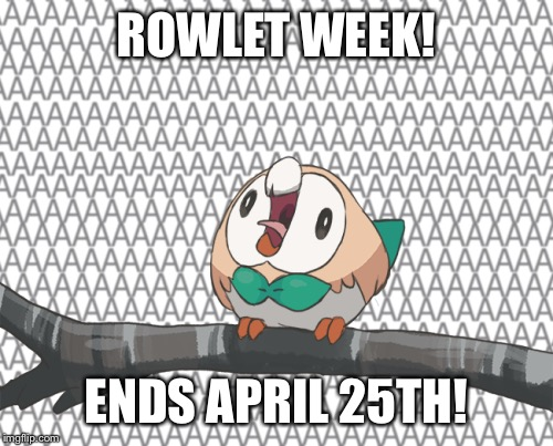 Rowlet week, a leolizard event! | ROWLET WEEK! ENDS APRIL 25TH! | image tagged in memes | made w/ Imgflip meme maker