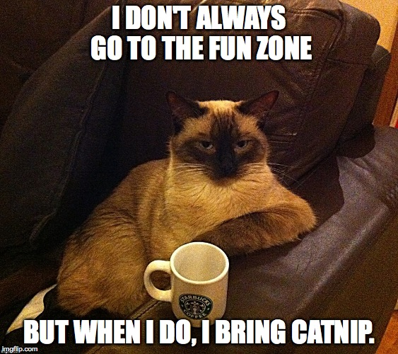 World's Most Interesting Kitty | I DON'T ALWAYS GO TO THE FUN ZONE BUT WHEN I DO, I BRING CATNIP. | image tagged in fun zone | made w/ Imgflip meme maker