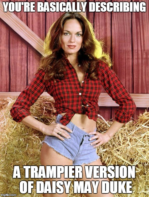 YOU'RE BASICALLY DESCRIBING A TRAMPIER VERSION OF DAISY MAY DUKE | made w/ Imgflip meme maker