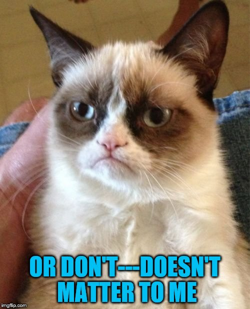 Grumpy Cat Meme | OR DON'T---DOESN'T MATTER TO ME | image tagged in memes,grumpy cat | made w/ Imgflip meme maker