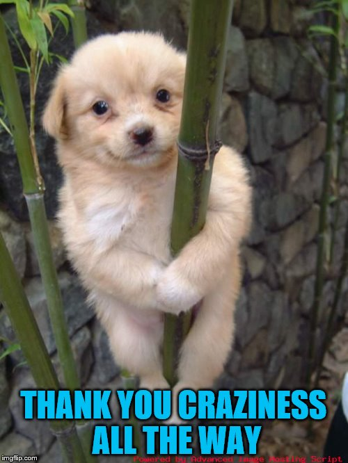 THANK YOU CRAZINESS ALL THE WAY | made w/ Imgflip meme maker