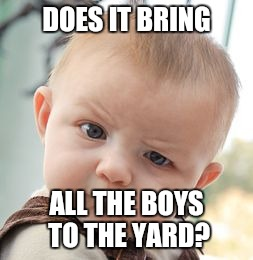 Skeptical Baby Meme | DOES IT BRING ALL THE BOYS TO THE YARD? | image tagged in memes,skeptical baby | made w/ Imgflip meme maker