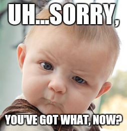 Skeptical Baby Meme | UH...SORRY, YOU'VE GOT WHAT, NOW? | image tagged in memes,skeptical baby | made w/ Imgflip meme maker