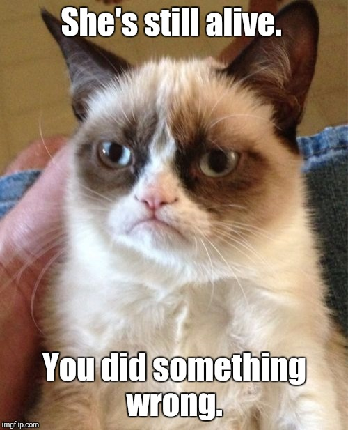 Grumpy Cat Meme | She's still alive. You did something wrong. | image tagged in memes,grumpy cat | made w/ Imgflip meme maker
