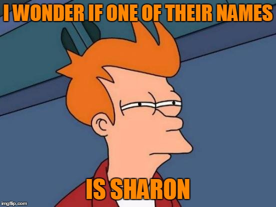 Futurama Fry Meme | I WONDER IF ONE OF THEIR NAMES IS SHARON | image tagged in memes,futurama fry | made w/ Imgflip meme maker