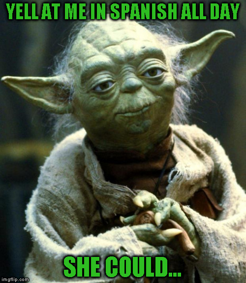 Star Wars Yoda Meme | YELL AT ME IN SPANISH ALL DAY SHE COULD... | image tagged in memes,star wars yoda | made w/ Imgflip meme maker