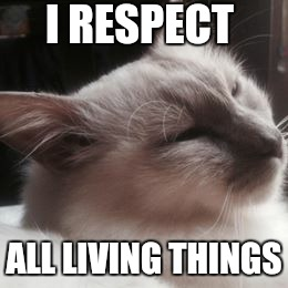 Unless it is kitty litter  | I RESPECT ALL LIVING THINGS | image tagged in memes,the most interesting cat in the world,funny cat memes,comit,facebook | made w/ Imgflip meme maker
