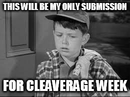 Cleavage week submission | THIS WILL BE MY ONLY SUBMISSION FOR CLEAVERAGE WEEK | image tagged in leave it to beaver,cleavage week | made w/ Imgflip meme maker
