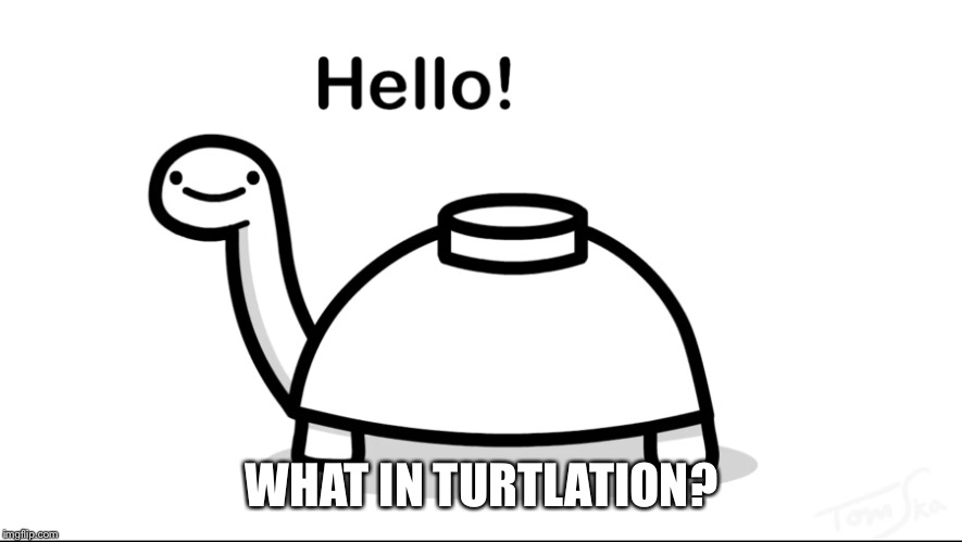 WHAT IN TURTLATION? | made w/ Imgflip meme maker