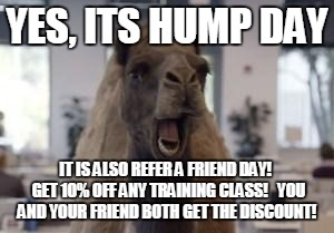 Hookin on Hump Day