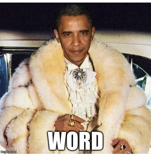 Pimp Daddy Obama | WORD | image tagged in pimp daddy obama | made w/ Imgflip meme maker