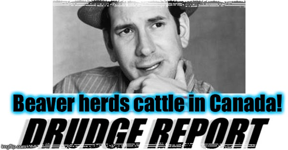 Beaver herds cattle in Canada! | made w/ Imgflip meme maker