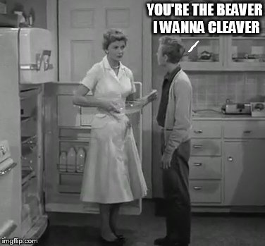 eddie and june | YOU'RE THE BEAVER I WANNA CLEAVER | image tagged in eddie and june | made w/ Imgflip meme maker