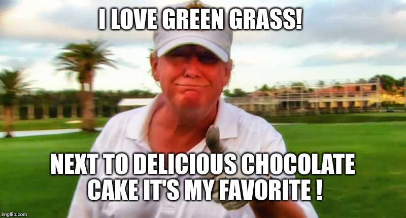 I LOVE GREEN GRASS! NEXT TO DELICIOUS CHOCOLATE CAKE IT'S MY FAVORITE ! | made w/ Imgflip meme maker