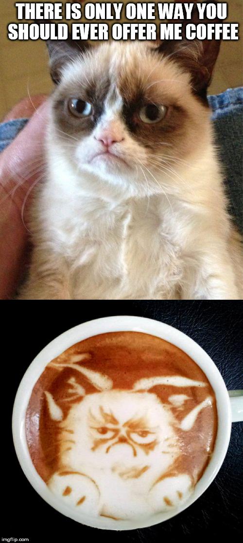 Cat Facebook Meme