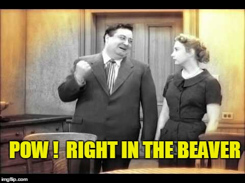 POW !  RIGHT IN THE BEAVER | made w/ Imgflip meme maker