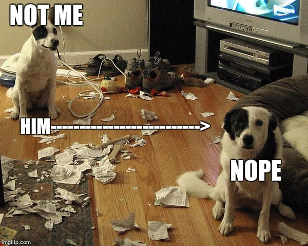 guiltydogs | NOT ME HIM--------------------------> NOPE | image tagged in guiltydogs | made w/ Imgflip meme maker