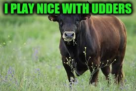 I PLAY NICE WITH UDDERS | made w/ Imgflip meme maker