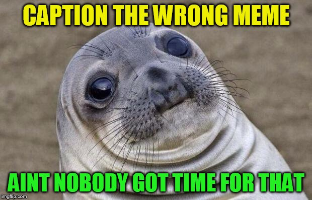 Awkward Moment Sealion Meme | CAPTION THE WRONG MEME AINT NOBODY GOT TIME FOR THAT | image tagged in memes,awkward moment sealion | made w/ Imgflip meme maker
