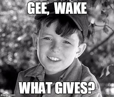 beave | GEE,  WAKE WHAT GIVES? | image tagged in beave | made w/ Imgflip meme maker