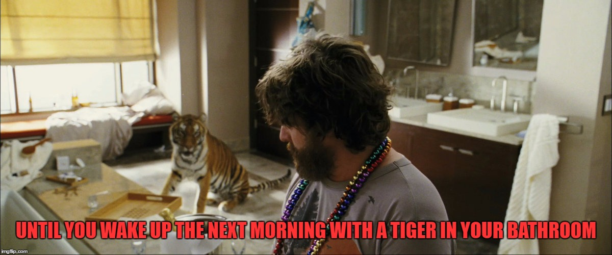 UNTIL YOU WAKE UP THE NEXT MORNING WITH A TIGER IN YOUR BATHROOM | made w/ Imgflip meme maker