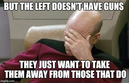 Captain Picard Facepalm Meme | BUT THE LEFT DOESN'T HAVE GUNS THEY JUST WANT TO TAKE THEM AWAY FROM THOSE THAT DO | image tagged in memes,captain picard facepalm | made w/ Imgflip meme maker