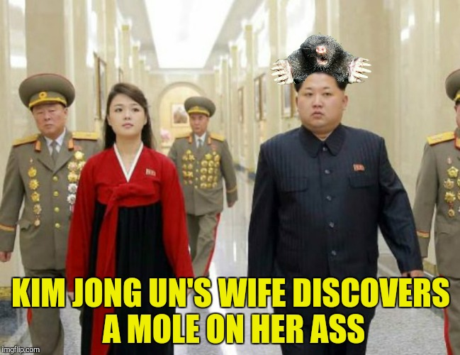 Does that make it an assmole?  | KIM JONG UN'S WIFE DISCOVERS A MOLE ON HER ASS | image tagged in kim jong un,mole,ri sol-ju,ass | made w/ Imgflip meme maker