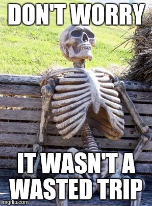 Waiting Skeleton Meme | DON'T WORRY IT WASN'T A WASTED TRIP | image tagged in memes,waiting skeleton | made w/ Imgflip meme maker