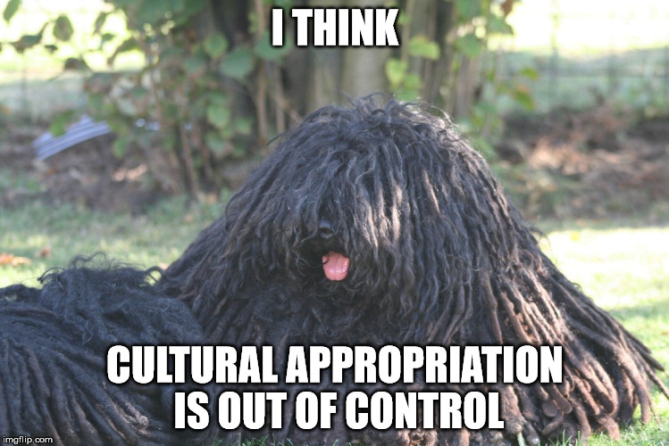 cultural appropriation | I THINK CULTURAL APPROPRIATION IS OUT OF CONTROL | image tagged in cultural appropriation | made w/ Imgflip meme maker