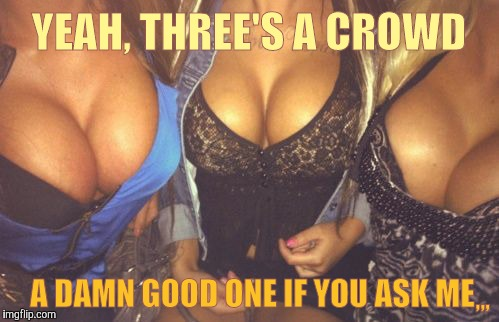What's better than double? Three times the fun! | YEAH, THREE'S A CROWD A DAMN GOOD ONE IF YOU ASK ME ,,, | image tagged in cleavage week,a mushuthedog event,cleavage,boom boom boobs,triple double d's,3's a good crowd | made w/ Imgflip meme maker