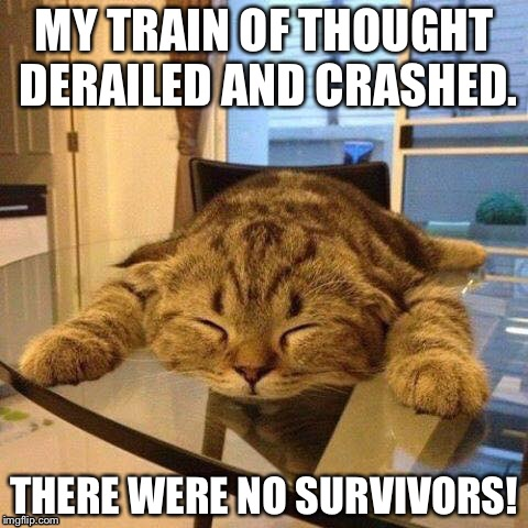 Mentally smoked cat | MY TRAIN OF THOUGHT DERAILED AND CRASHED. THERE WERE NO SURVIVORS! | image tagged in tired cat | made w/ Imgflip meme maker