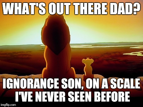 Lion King Meme | WHAT'S OUT THERE DAD? IGNORANCE SON, ON A SCALE I'VE NEVER SEEN BEFORE | image tagged in memes,lion king | made w/ Imgflip meme maker
