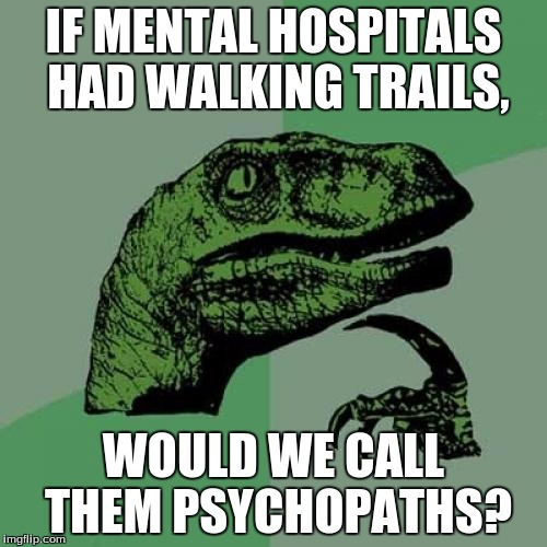 Philosoraptor | IF MENTAL HOSPITALS HAD WALKING TRAILS, WOULD WE CALL THEM PSYCHOPATHS? | image tagged in memes,philosoraptor,good question | made w/ Imgflip meme maker